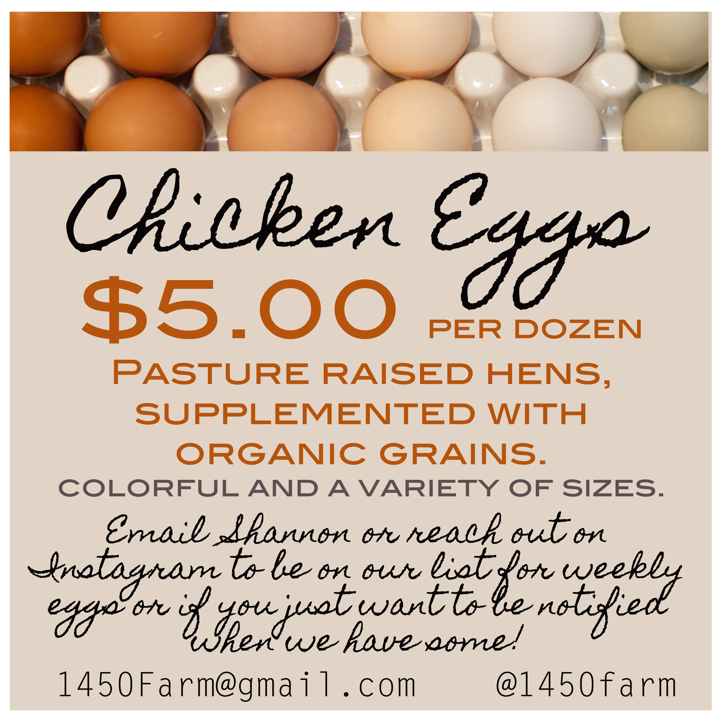 eggs for sale2